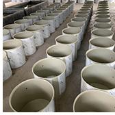 水产养殖育苗项目一