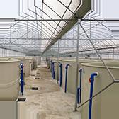 工厂化循环水养殖鱼苗项目一
